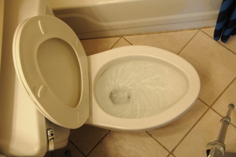 the-flush